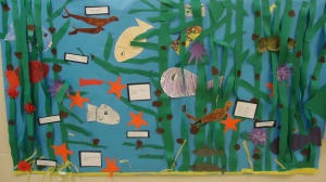 A digital story was created with all of the children's research. I scanned the children's writing along with their illustrations. I used Keynote and placed each of the children's pages of text onto a slide. A small group of children were recorded reading the text upon the slides. The keynote was then exported as an iMovie. We posted the individual pages of the children's kelp research in the hall for all the other students of our school to enjoy. I submitted the digital story to the Floating Forest blog. Here is the link to view my students' digital informational book on kelp: http://blog.floatingforests.org